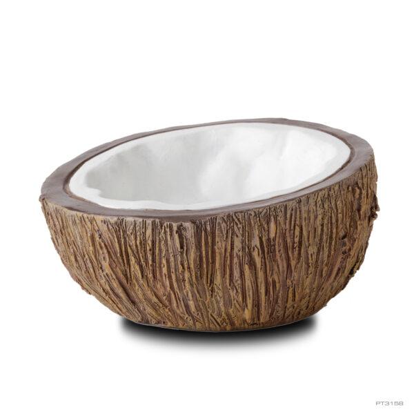 Coconut Water Dish